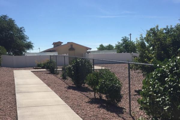 outside-the-kennel-119DBC967C-3289-072D-F9EF-05AD042AEDA9.jpg