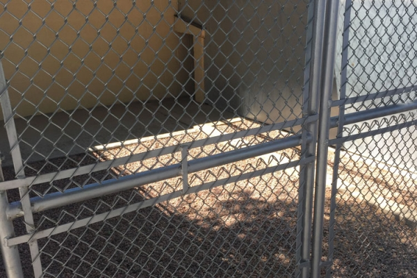 outside-the-kennel-2F3A3B5C9-DD8F-27A4-8AD3-8964B1BA0A3E.jpg
